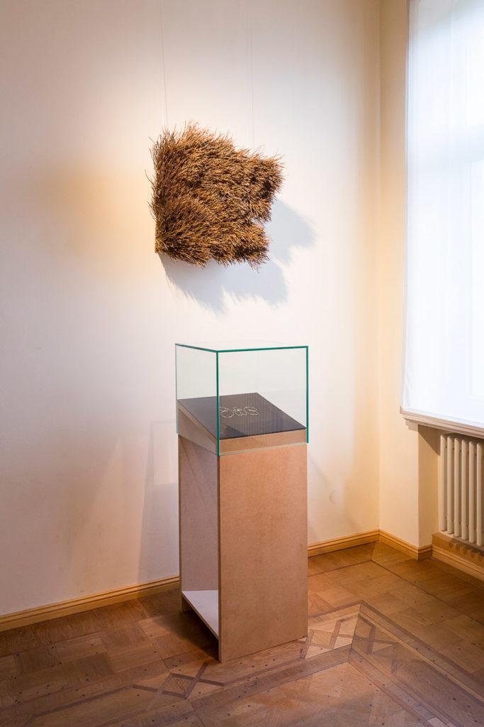 »generell frisch« Ausstellung im Literaturhaus Halle | Foto Matthias Ritzmann